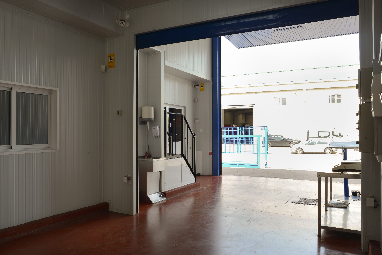 Foto 8 de Productos congelados en Jerez de la Frontera | Congelados Disel