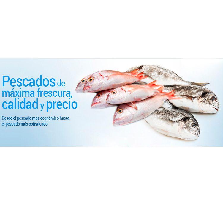 Pescados de máxima frescura, calidad y precio