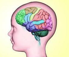 EVALUACION NEUROPSICOLOGICA : SERVICIOS  de Neurovita Lorena Rodríguez