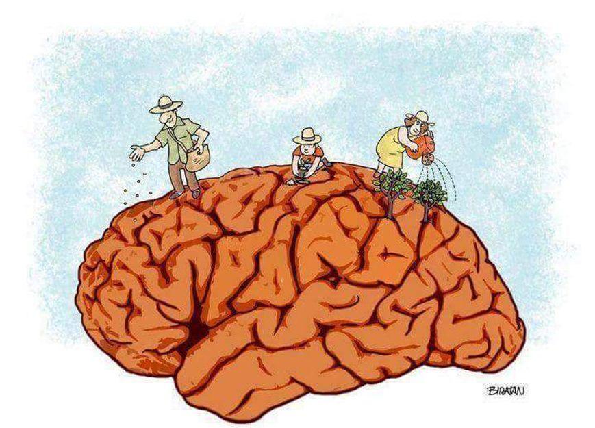 Neuropsicología juvenil en Valencia