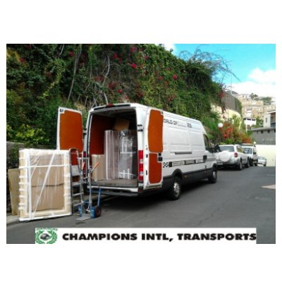 Mudanza local: Servicios de Champions International Transports & Moving