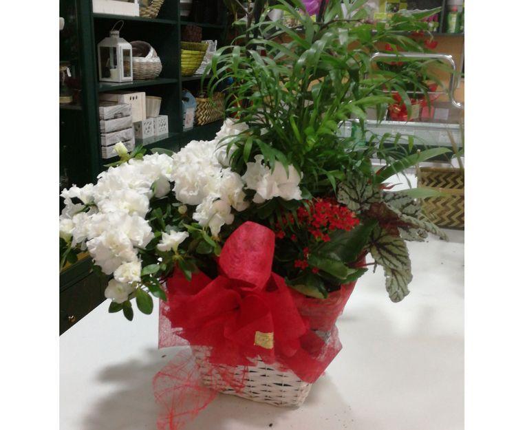 Centros de flores en A Couña