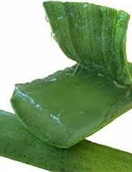 Foto 2 de Cosmética aloe vera en  | Aloe Fábrica Ecológico