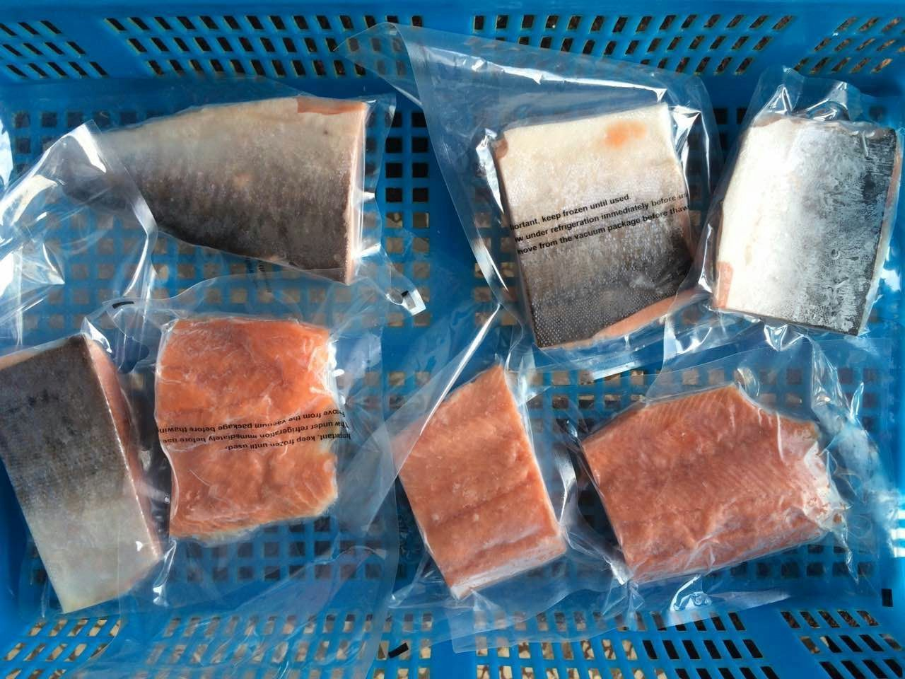 Porciones de salmón