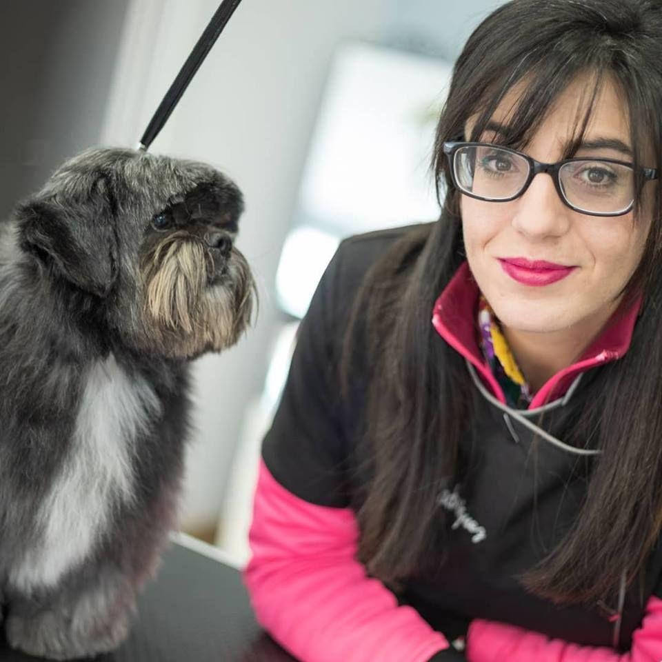 Peluquería canina y felina Gijón