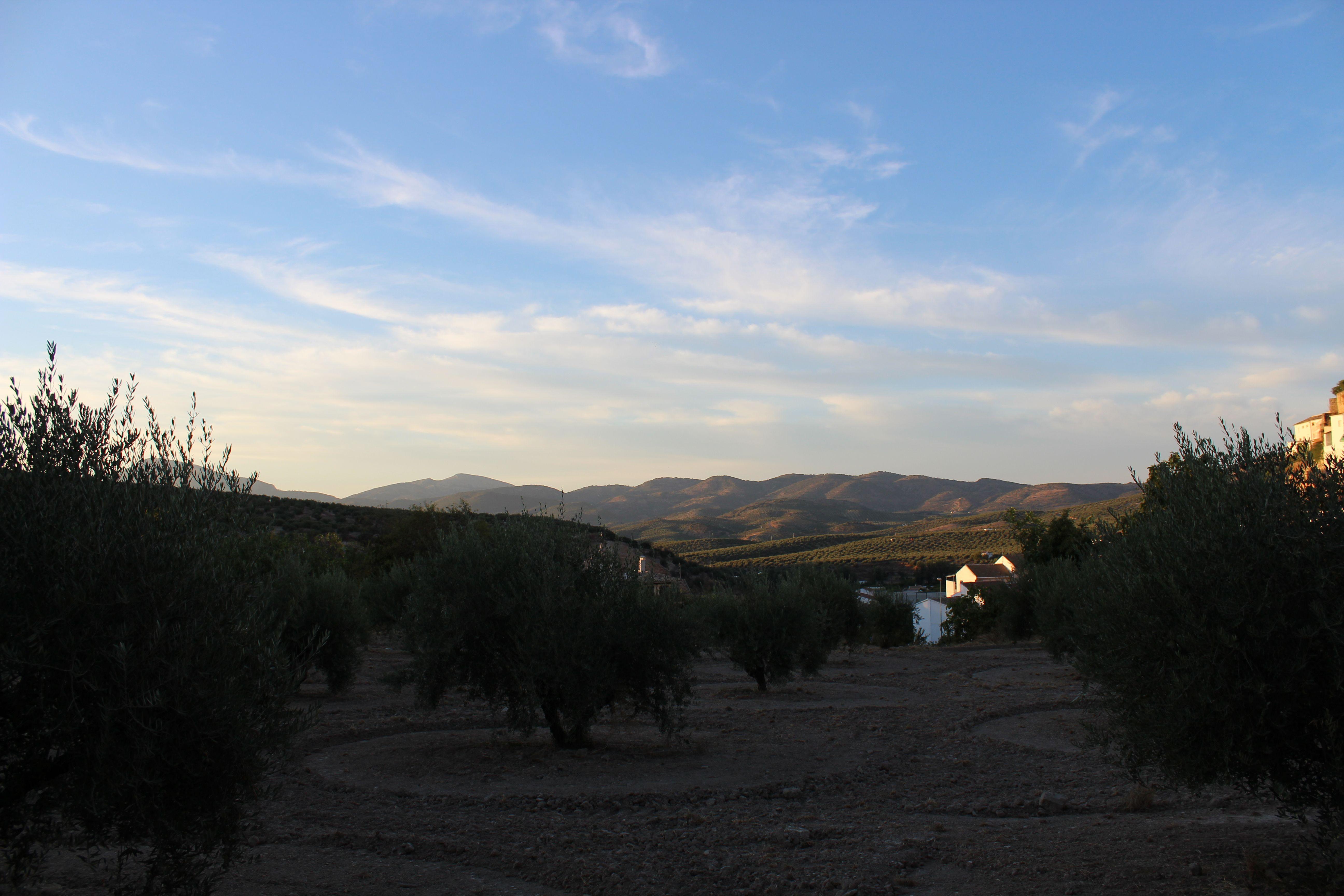 Foto 2 de Hospedería en Castillo de Locubín   Hospedería Locubín