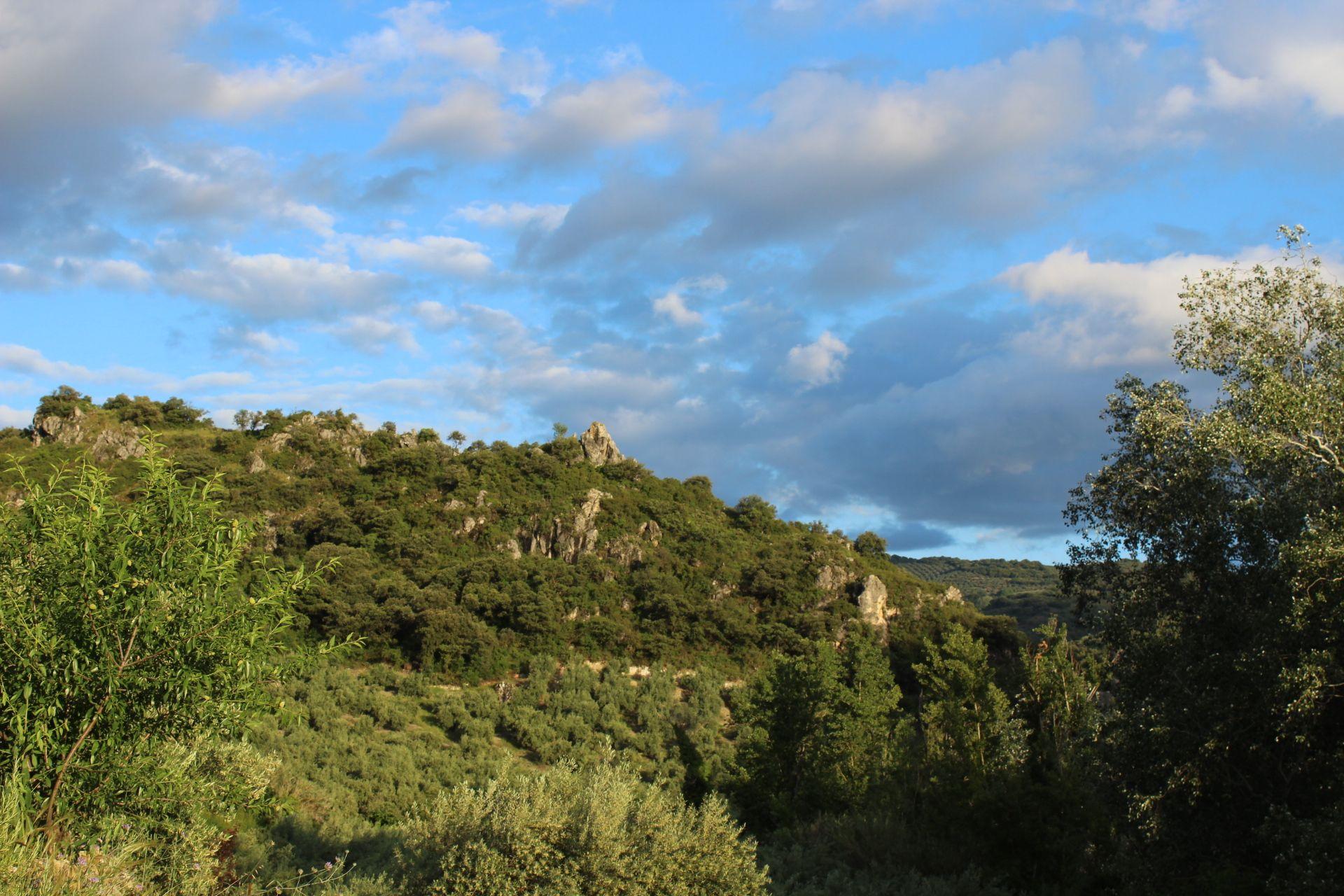 Foto 12 de Hospedería en Castillo de Locubín | Hospedería Locubín