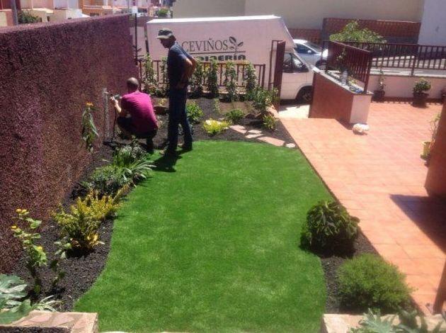 Rehabilitación de jardines