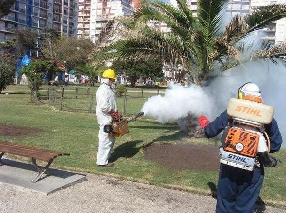 Control de enfermedades en Canarias