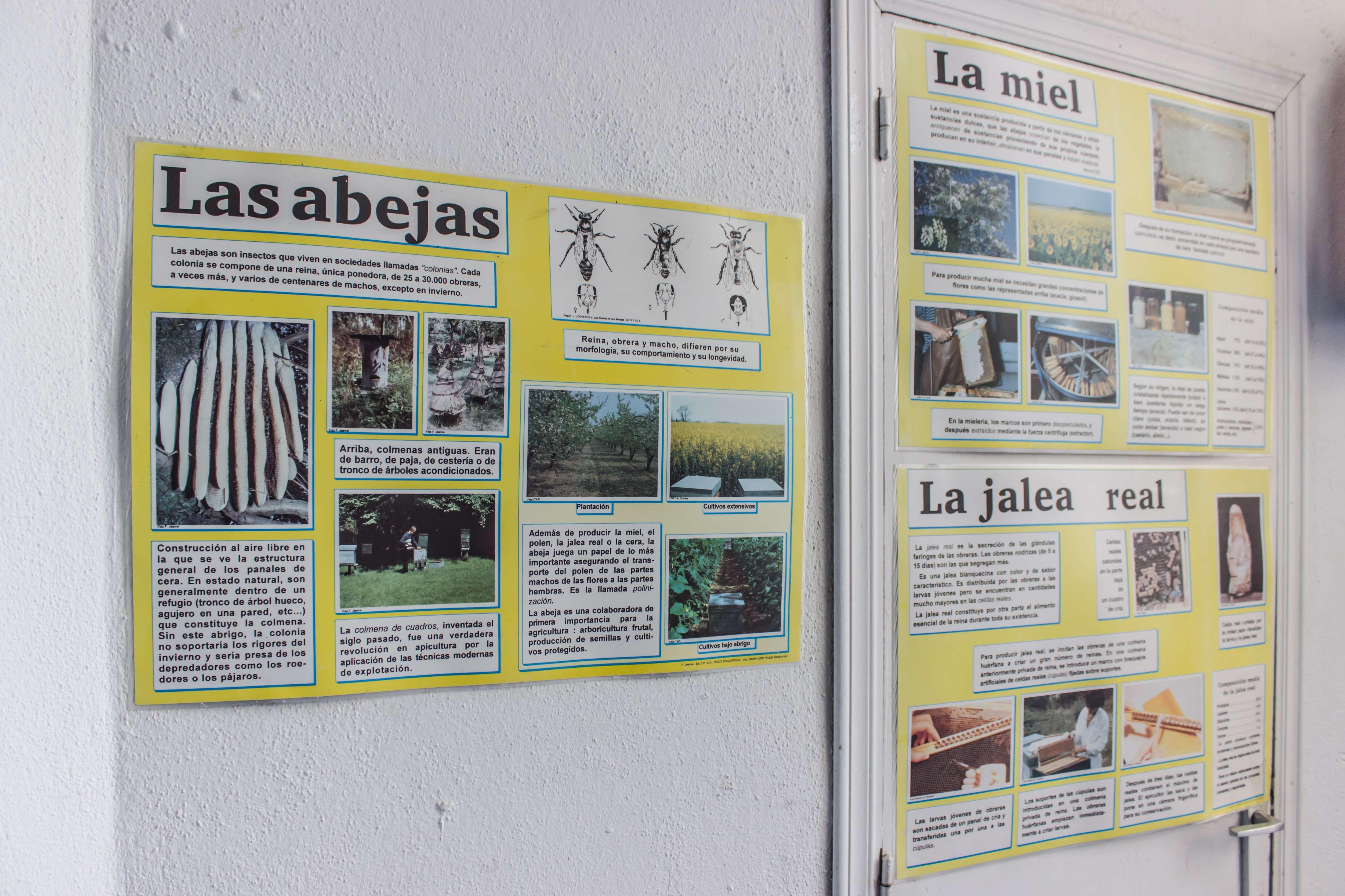 Las abejas de Extremadura