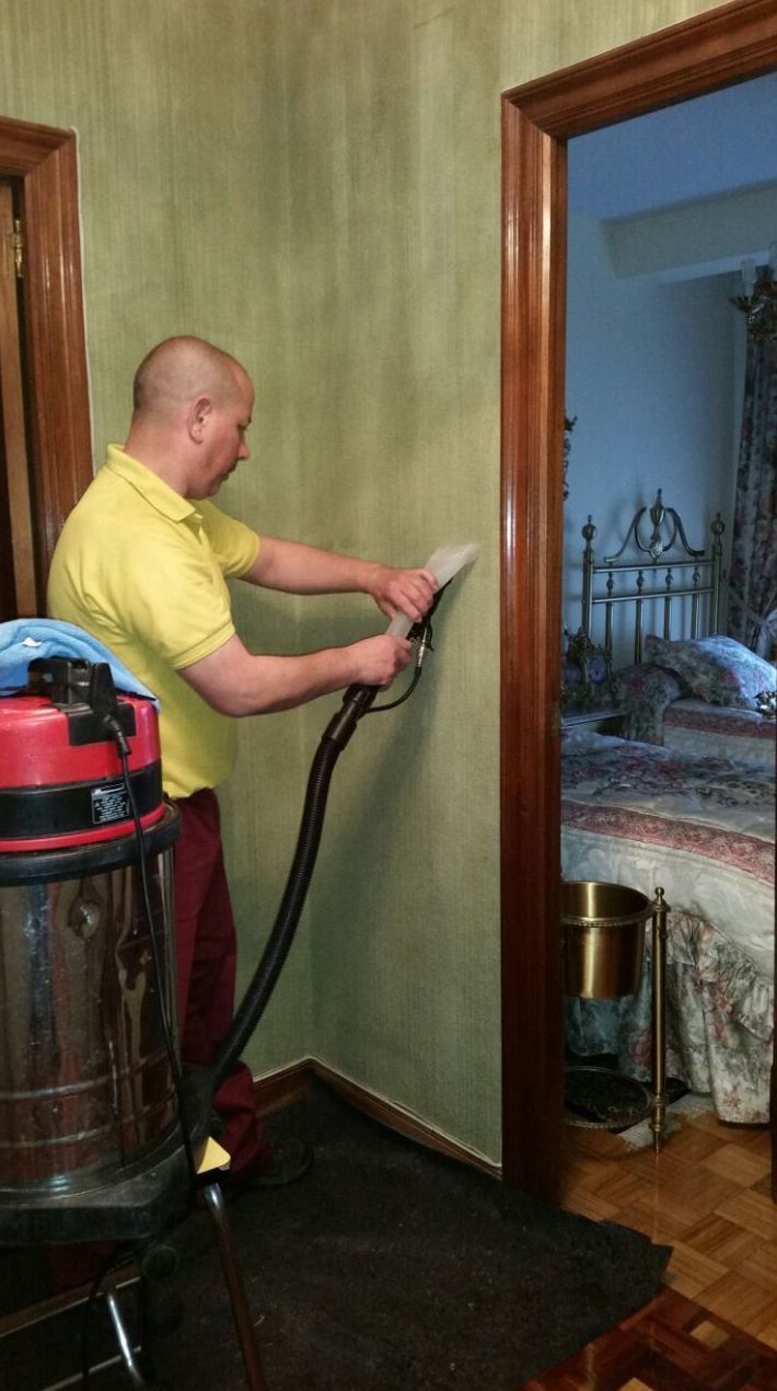 Limpieza de pared enmoquetada