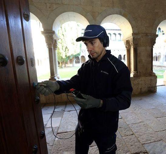 Control de Termitas: Servicios  de Desinfecciones Benidorm parte del Grupo Anticimex