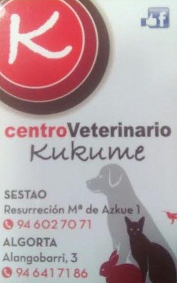 Centro Veterinario en Algorta