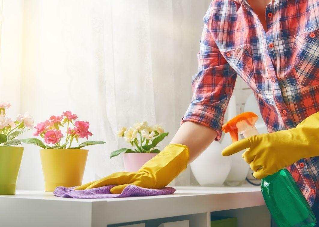 Empresa de limpiezaen Zamora