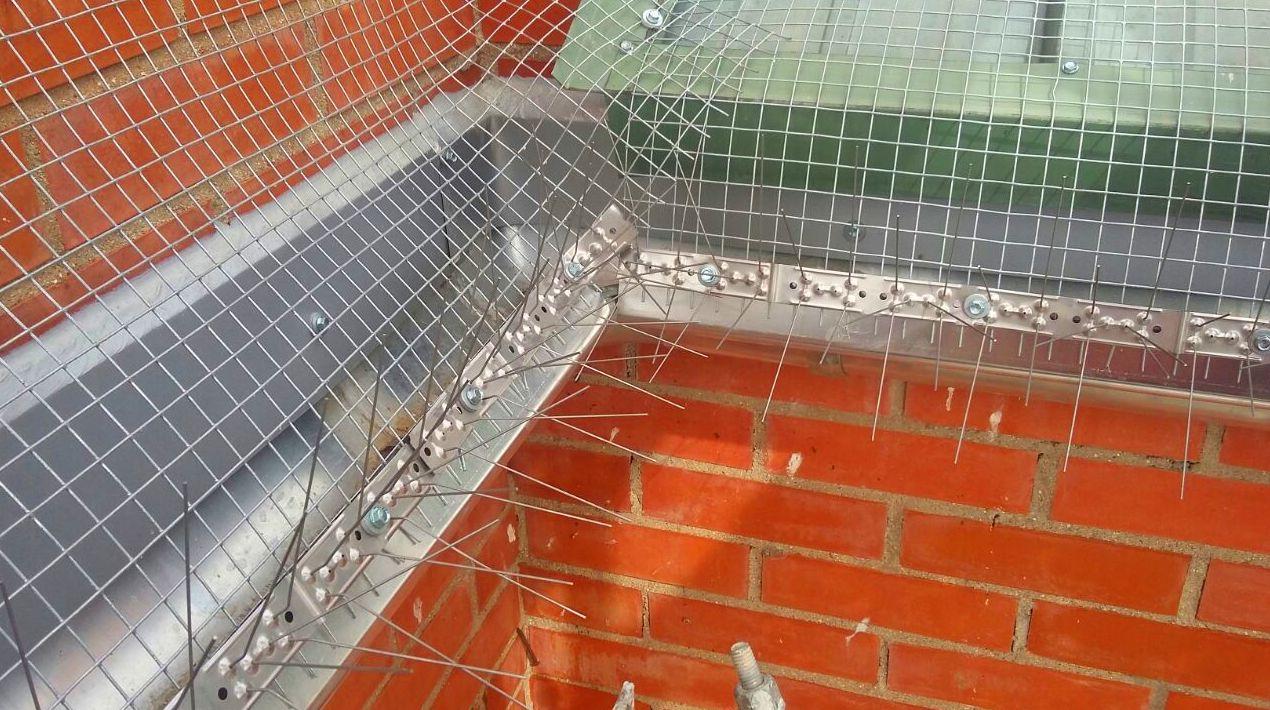 Instalación sistema antipajaros. Mallas y pinchos