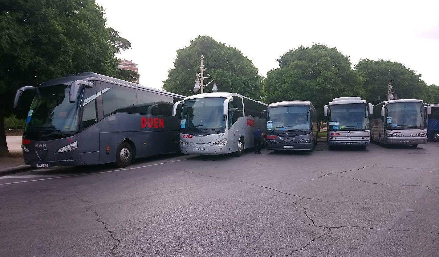 Contratar autobuses en Algemesi