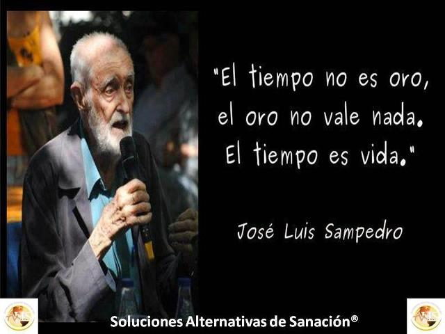 Jose Luis Sampedro: In memoriam