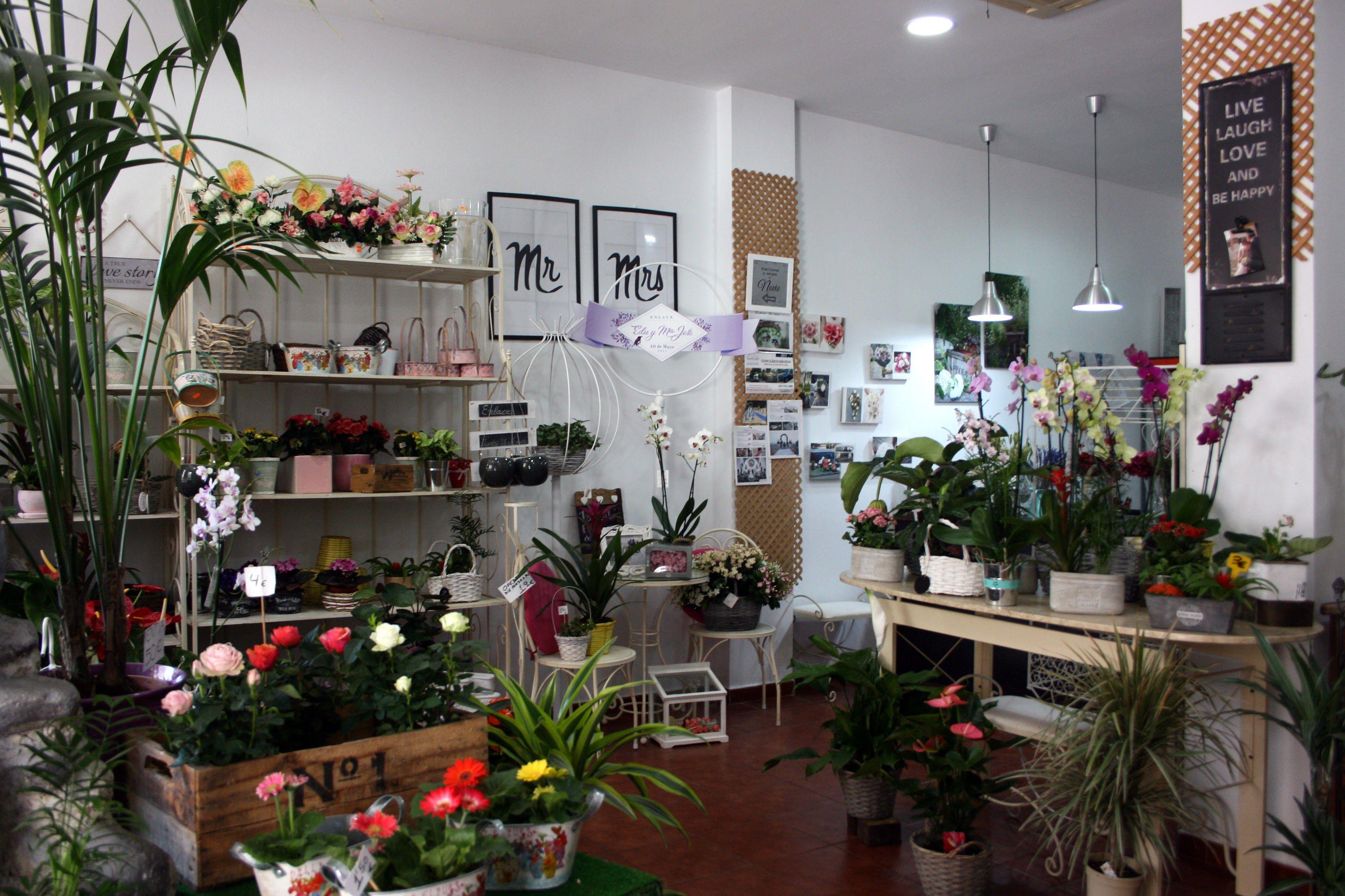 Foto 2 de Florists en Almuñécar | El Jardín de Charlotte