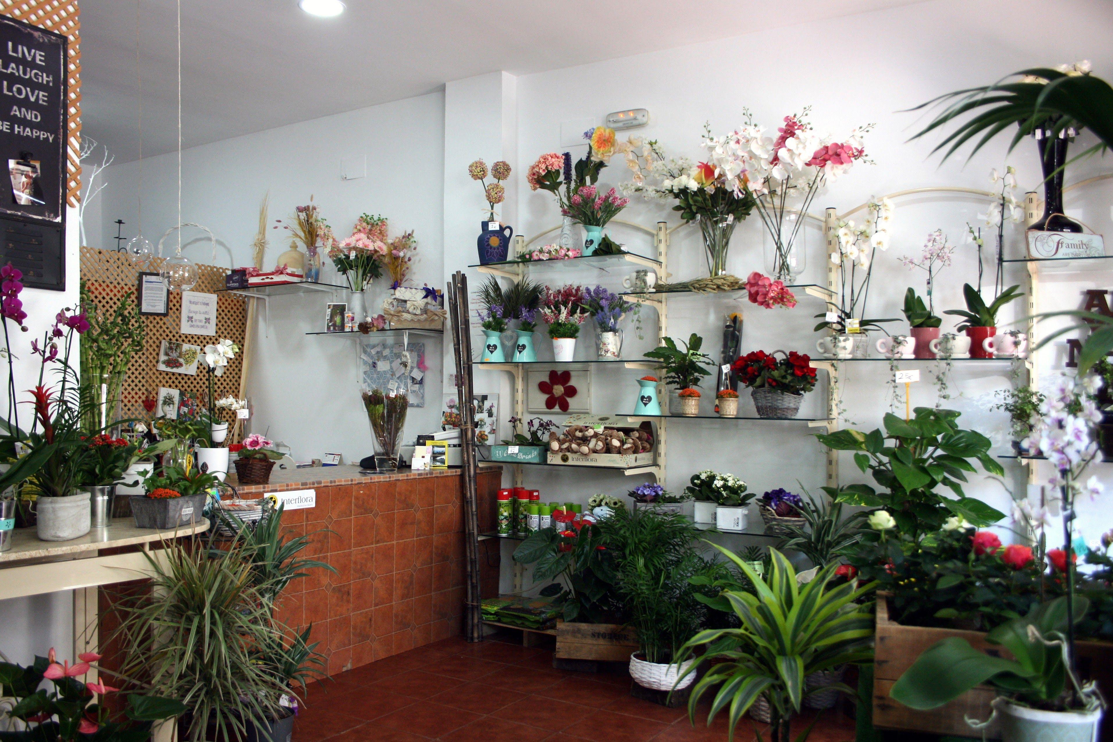 Foto 4 de Florists en Almuñécar   El Jardín de Charlotte