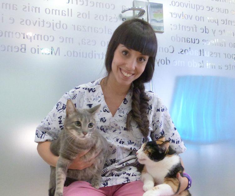 Clínica veterinaria para gatos en Alcorcón