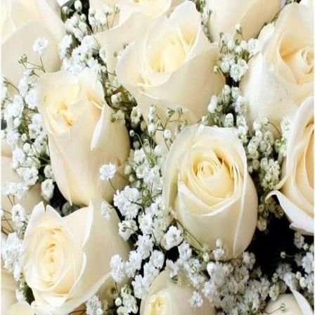Rosas blancas: Productos de Floristería Pothos