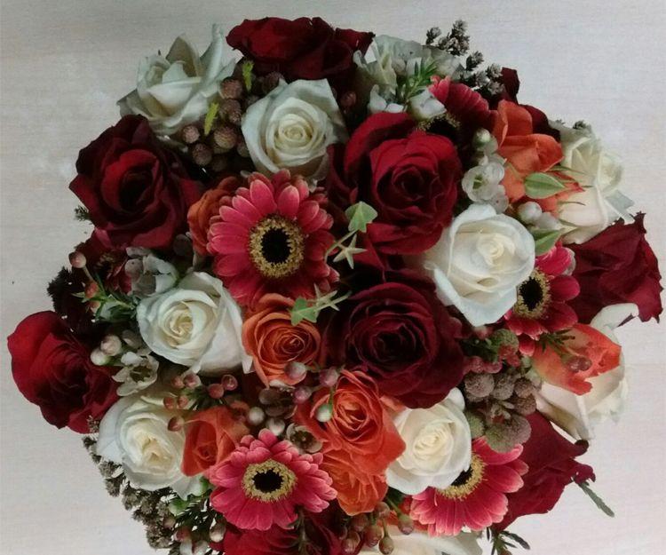 Flores y plantas naturales en Logroño