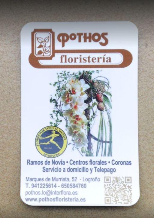 Foto 16 de Floristerías en Logroño | Floristería Pothos