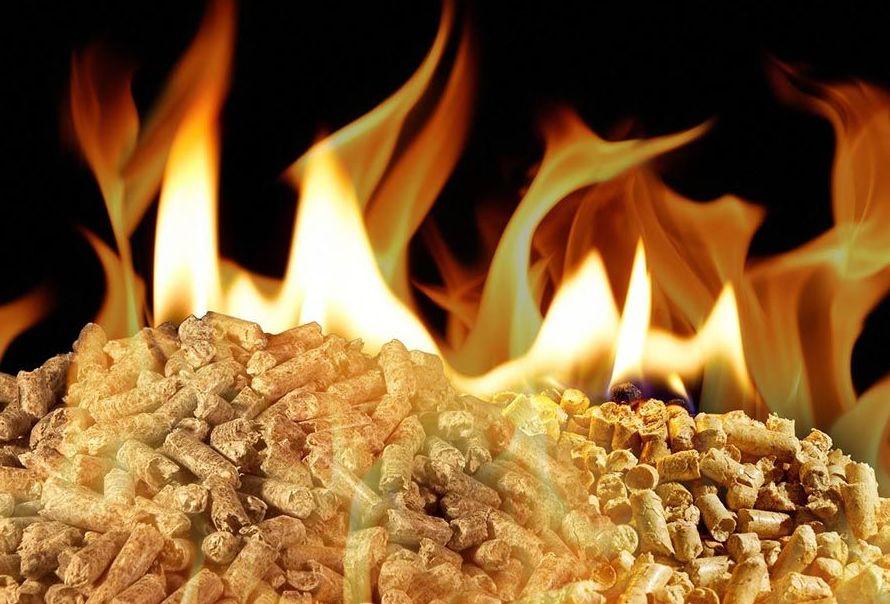 Biomasa Pellet: Nuestros Servicios de Solosol