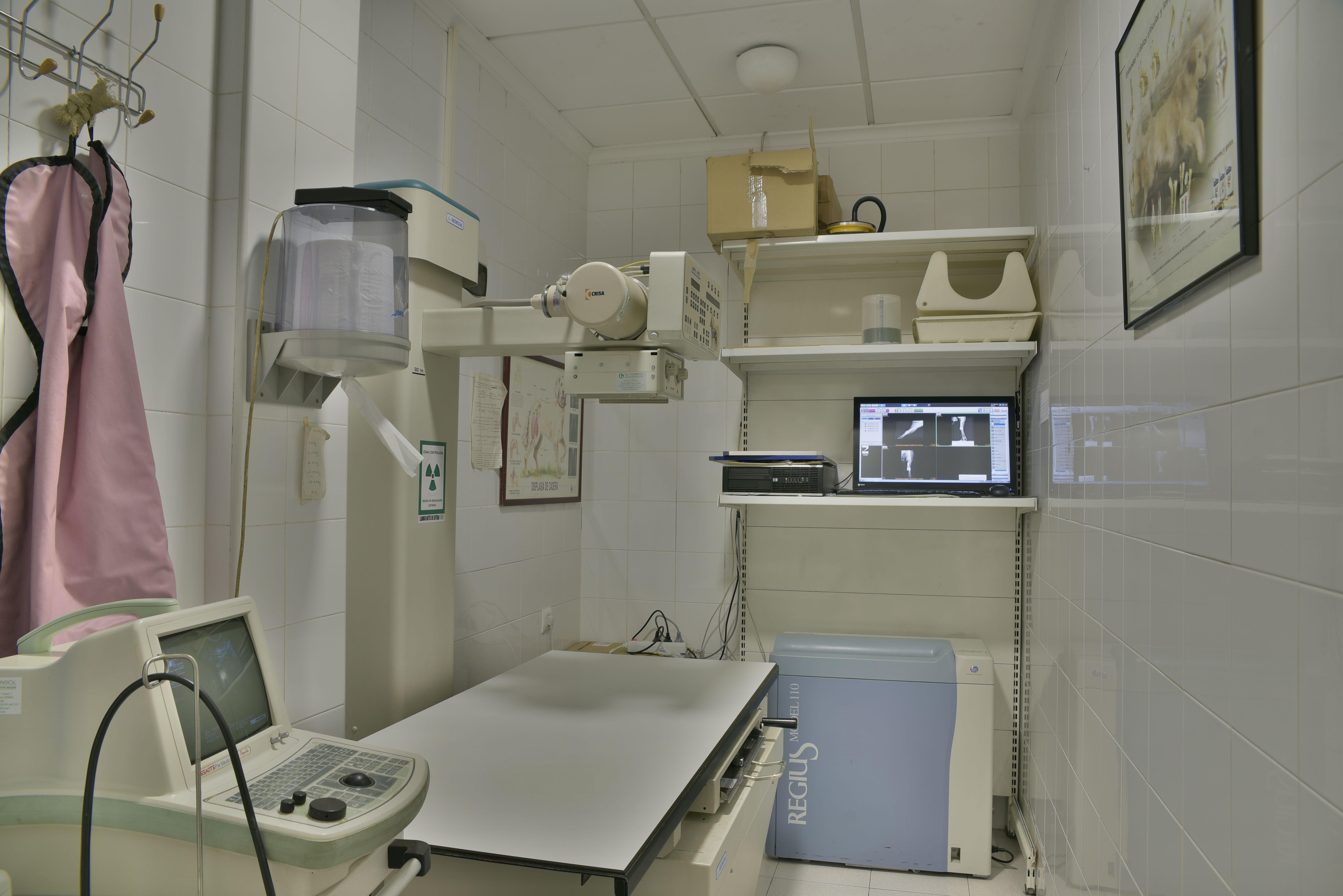 Foto 2 de Veterinarios en Albacete | Clínica Veterinaria Al-Beitar