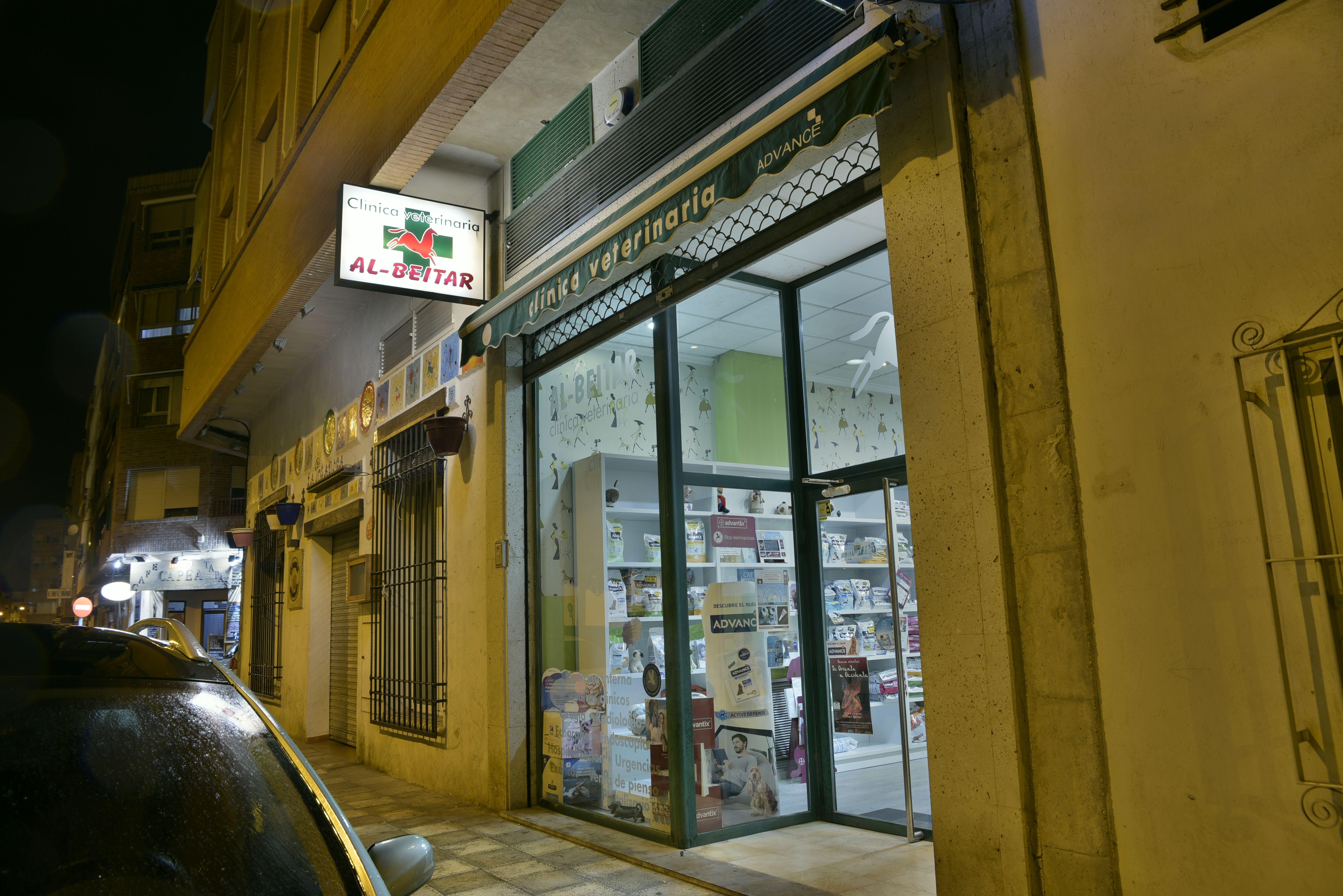 Foto 1 de Veterinarios en Albacete   Clínica Veterinaria Al-Beitar