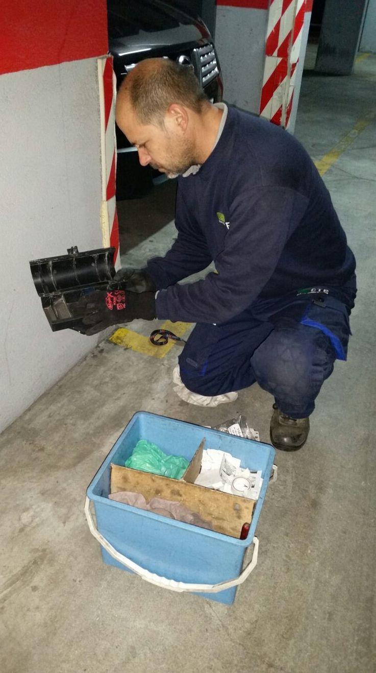 ELIMINACION DE RATAS : Servicios de CTP CONTROL