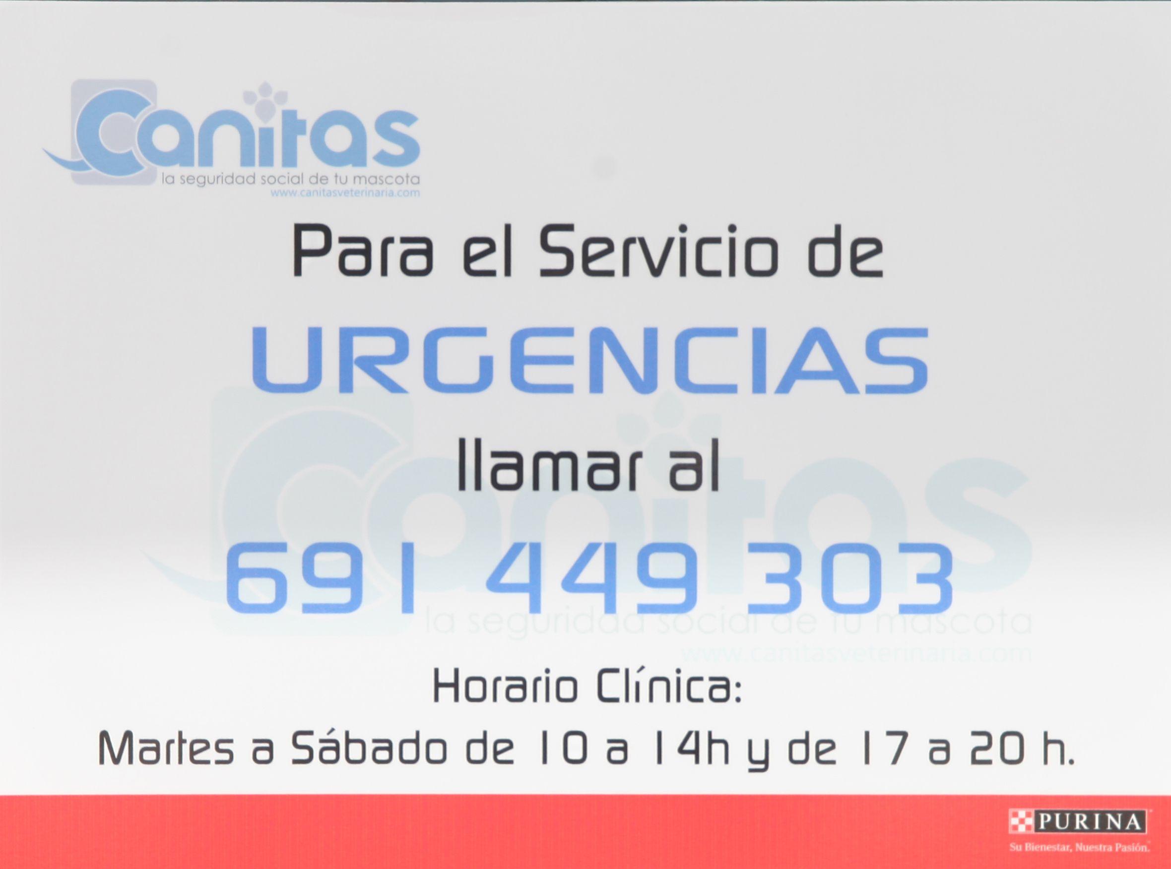 Foto 5 de Veterinarios en  | ELADIO ÁLVAREZ BOCANEGRA