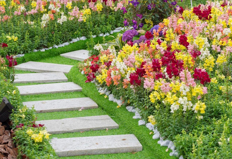 Jardines: Limpiezas y mantenimientos de Integrales Ecolimpza
