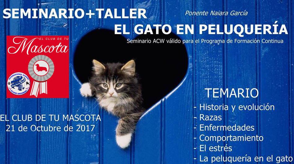 SEMINARIO TALLER EL GATO EN LA PELUQUERÍA