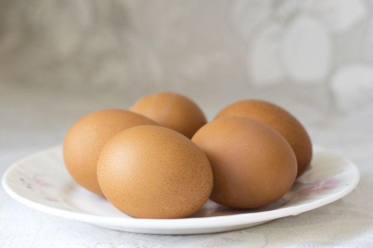 Distribución de huevos en Granada