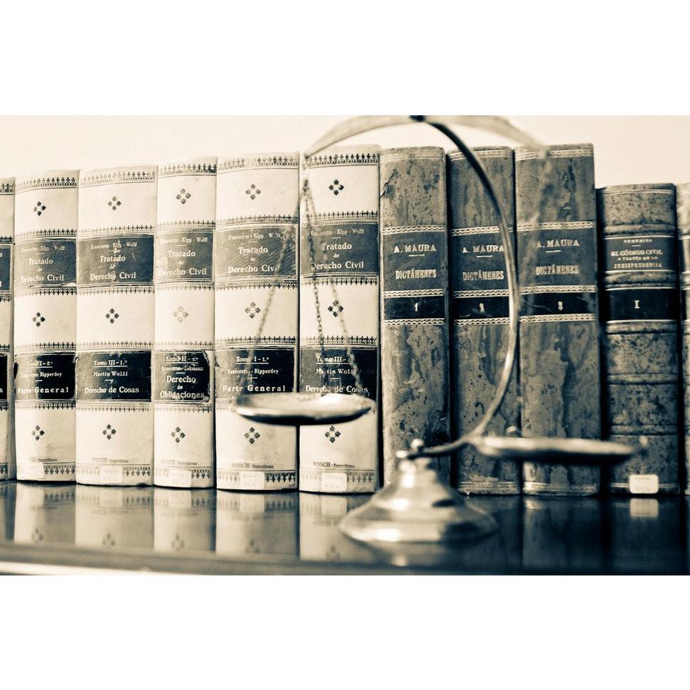 Derecho mercantil : Servicios de Antonia Barba Garcia