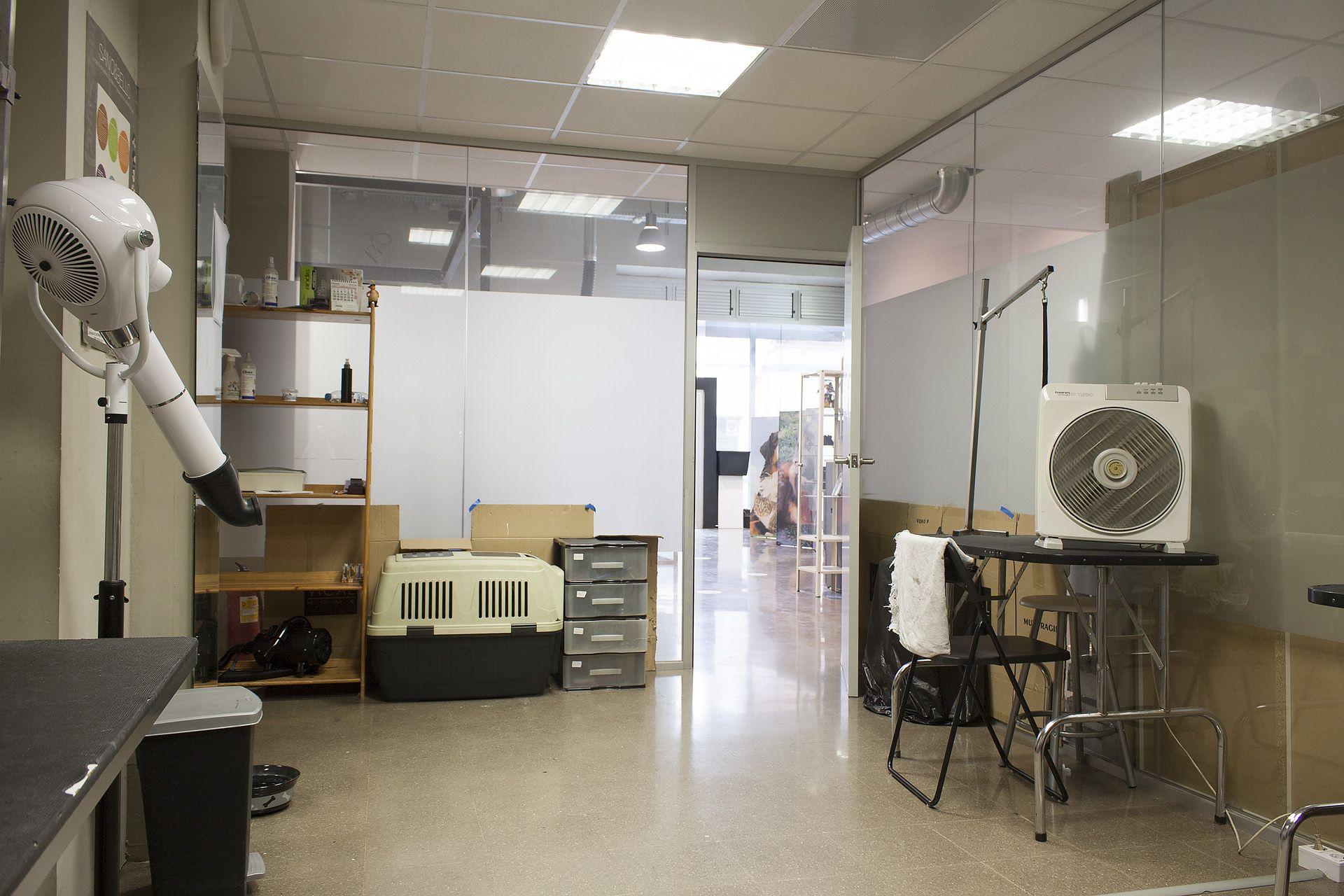 Cursos de auxiliar técnico veterinario en Sabadell