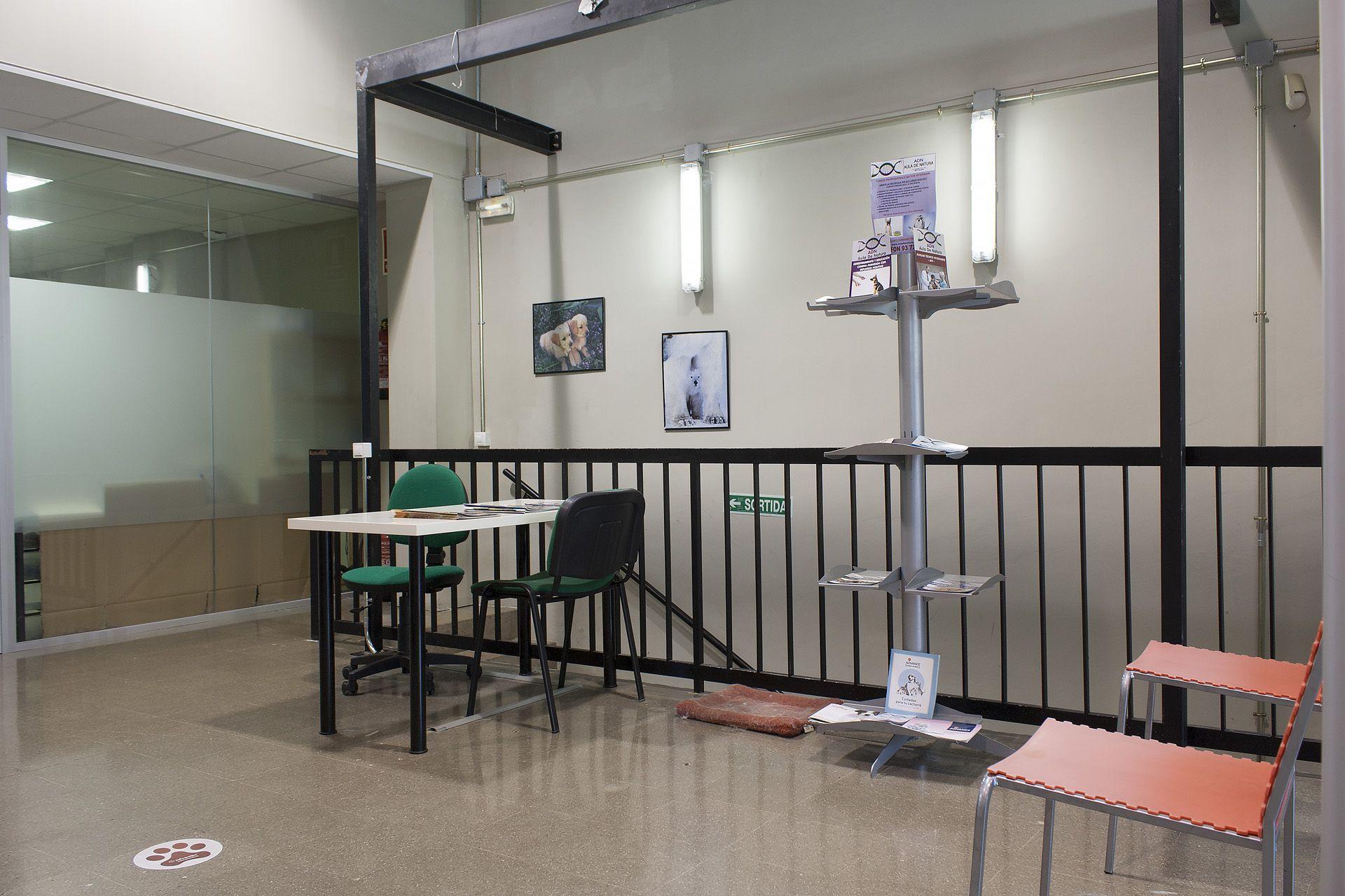 Etología canina y felina en Aula de Natura, Sabadell