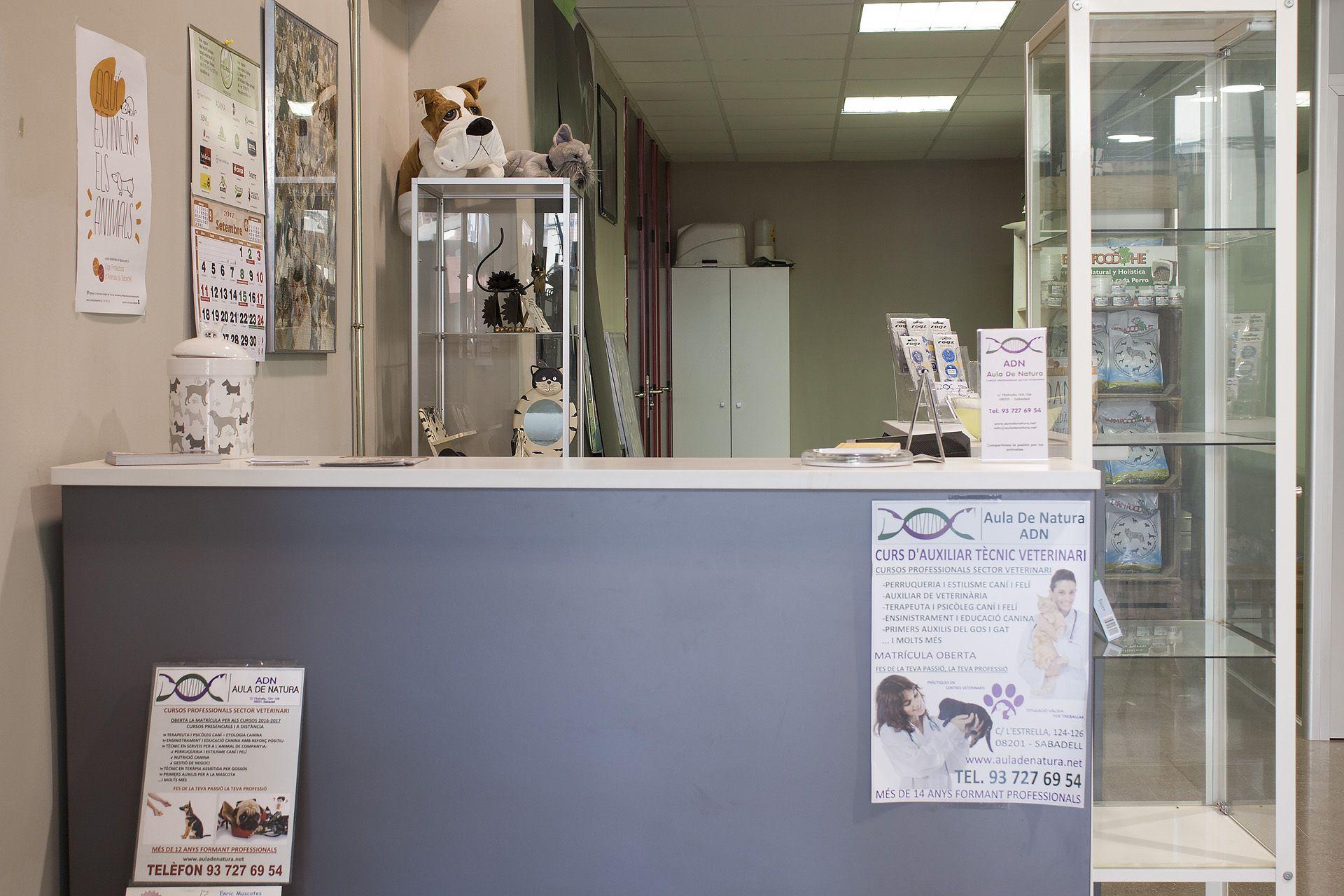Cursos profesionales del sector veterinario en Sabadell