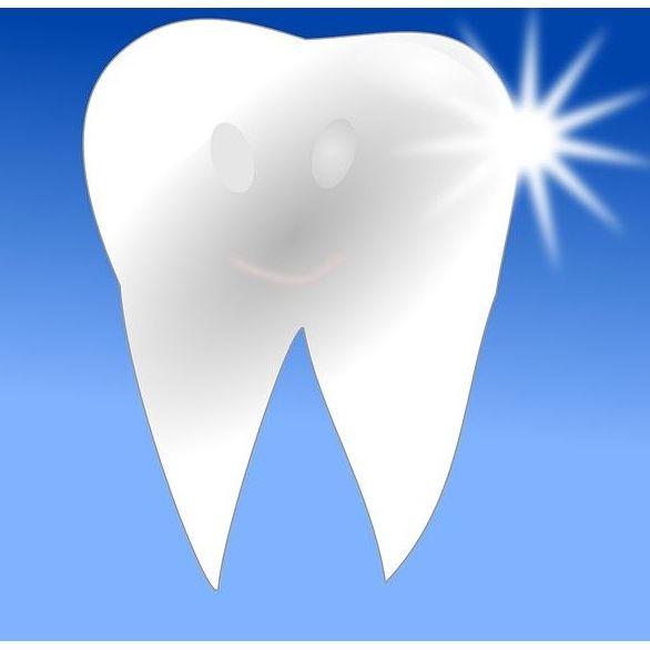 Empastes: Tratamientos de Grupo Clínico Dental       Dr. Borrega