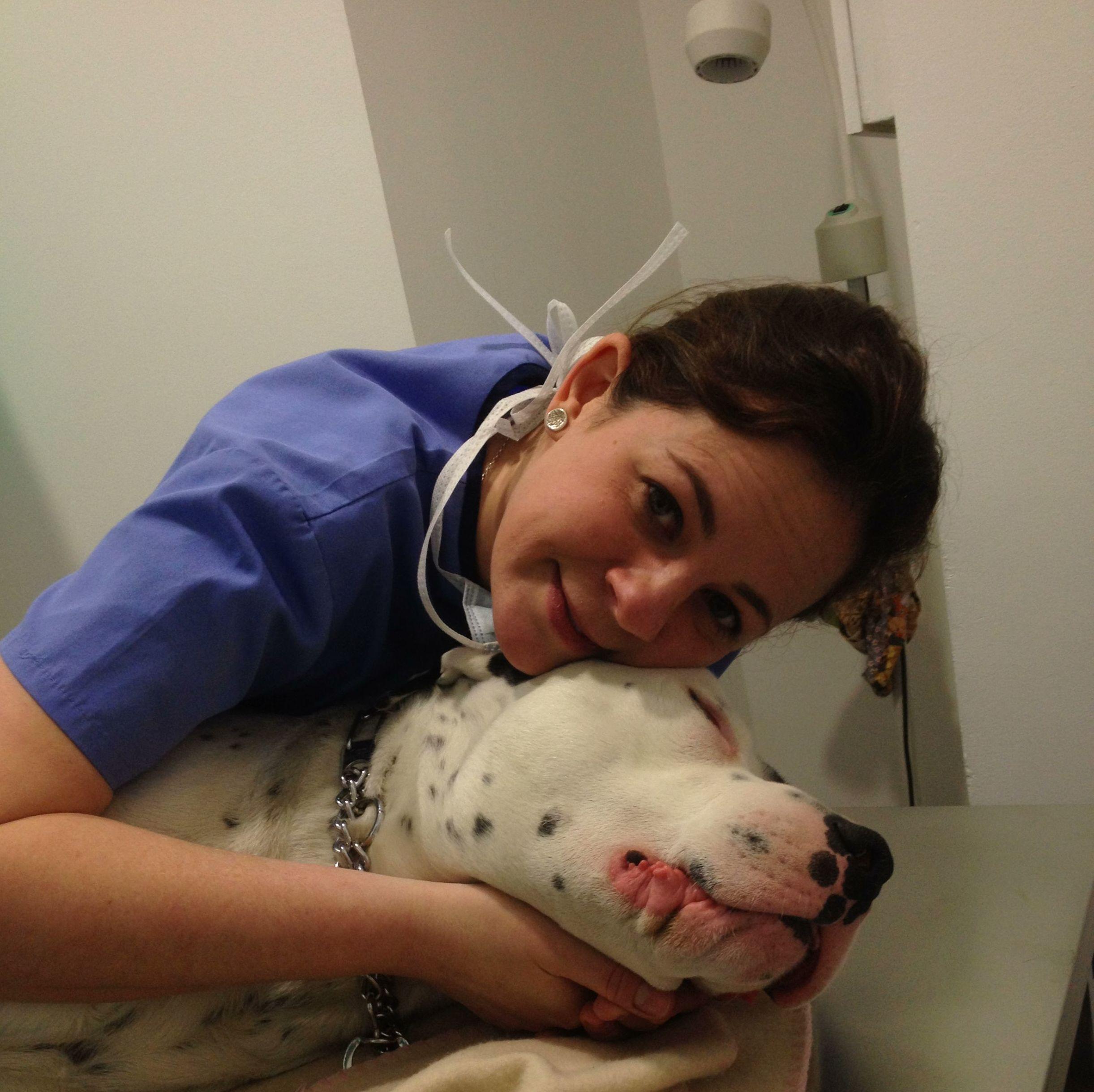 Clinica veterinaria en Reus