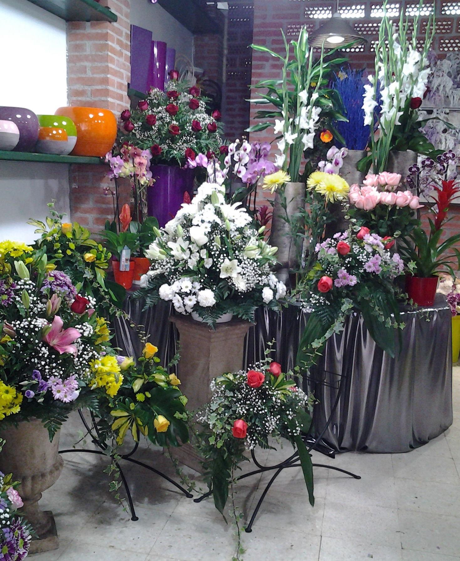 Foto 17 de Floristerías en Pravia | Arte Flor