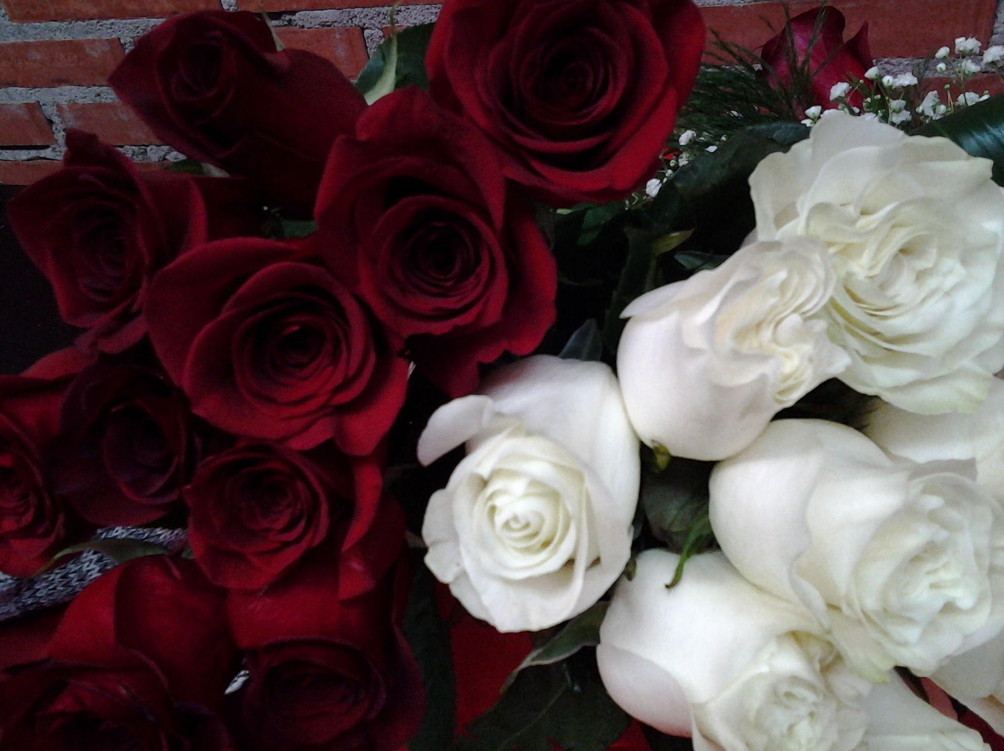 Se acerca San Valentin