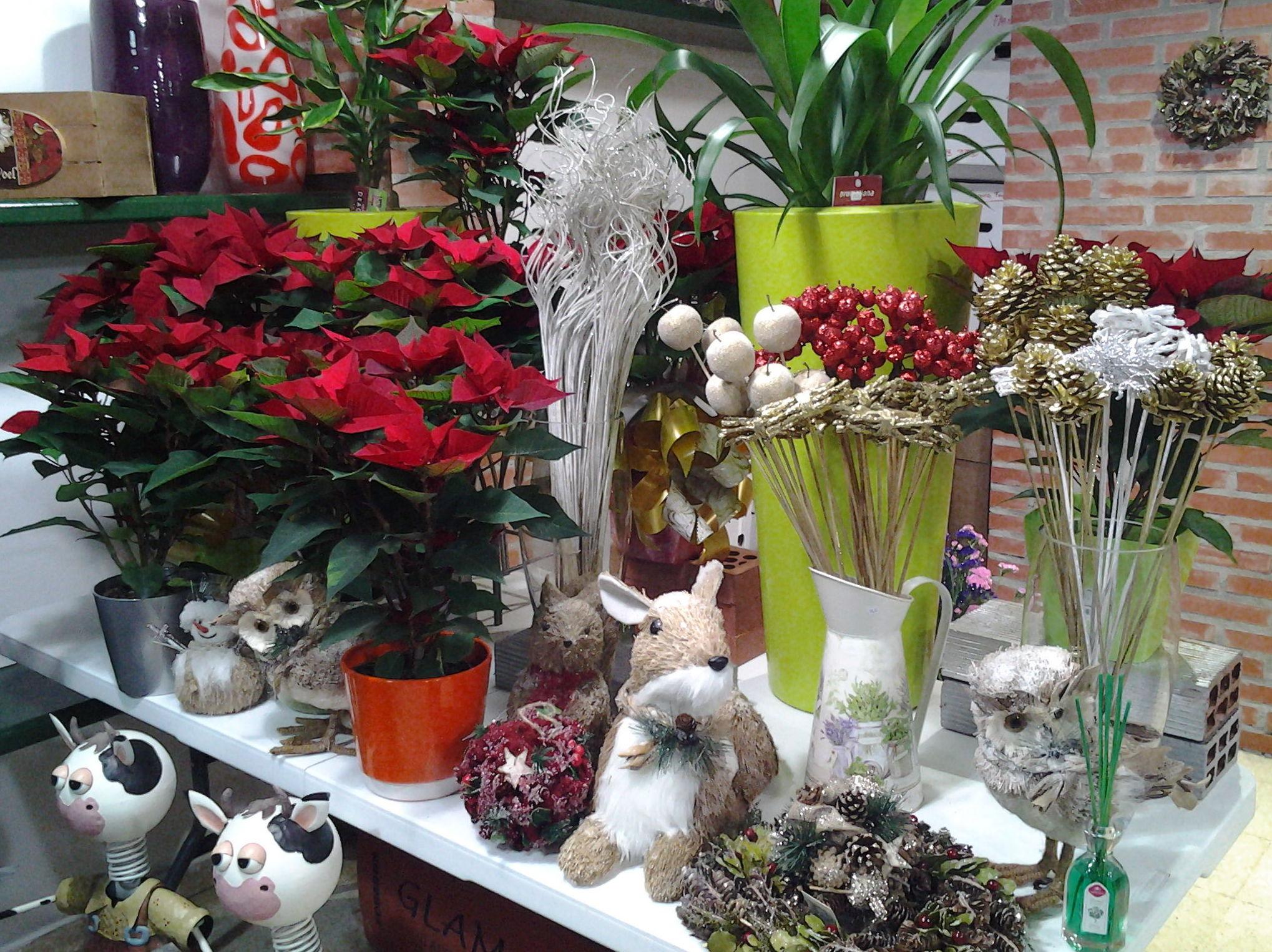 Foto 6 de Floristerías en Pravia | Arte Flor