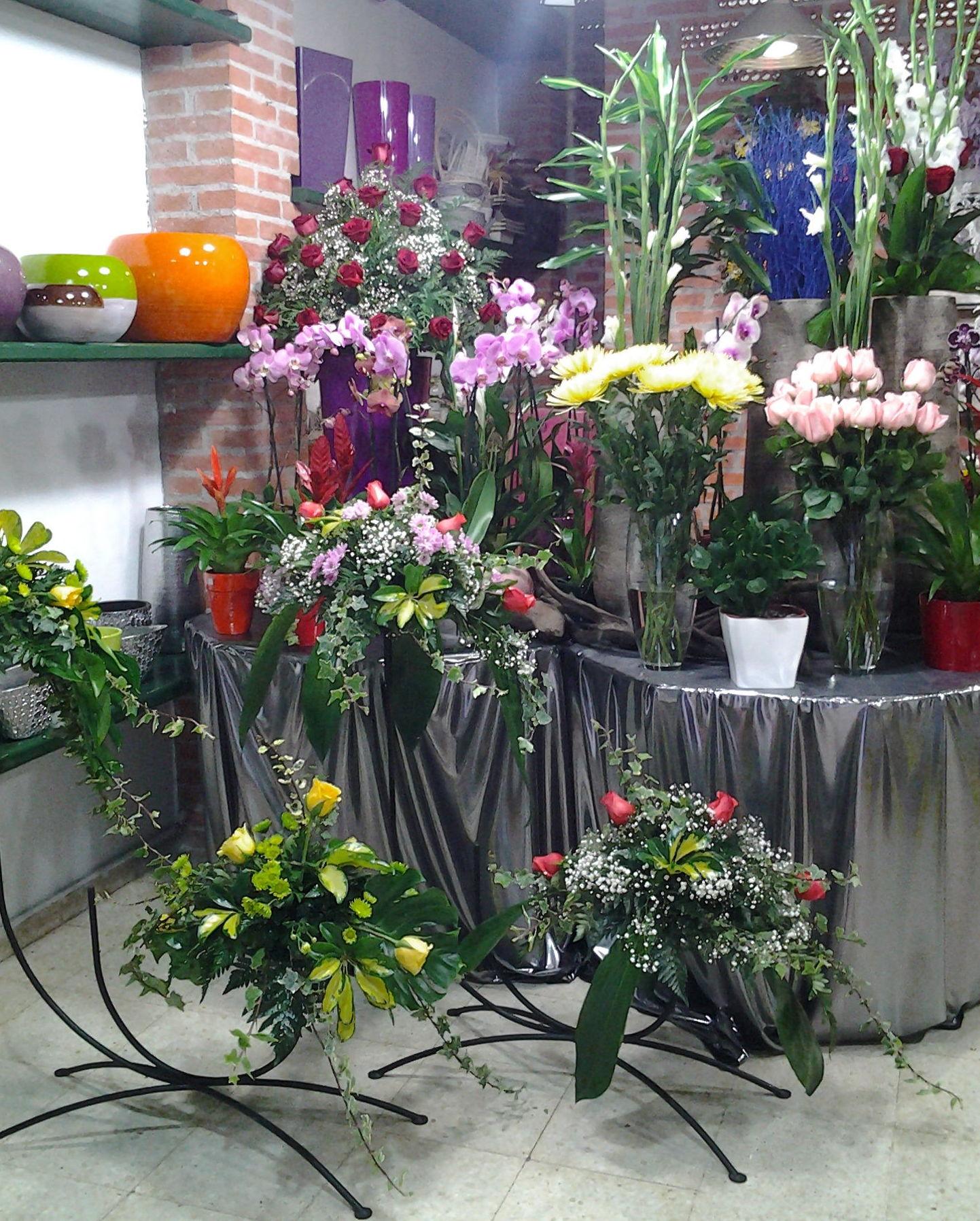Foto 16 de Floristerías en Pravia | Arte Flor