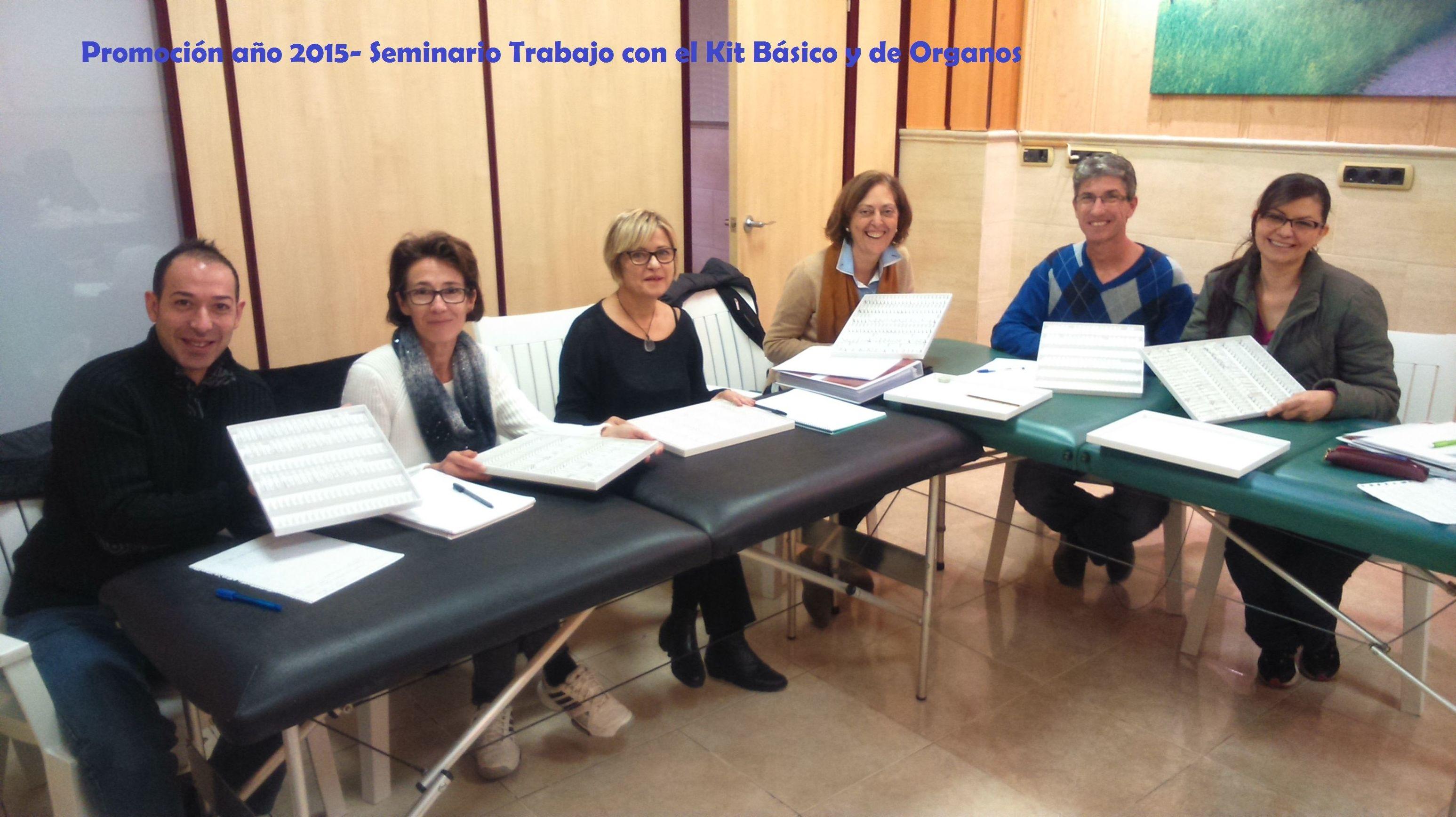 Promoción curso 2015