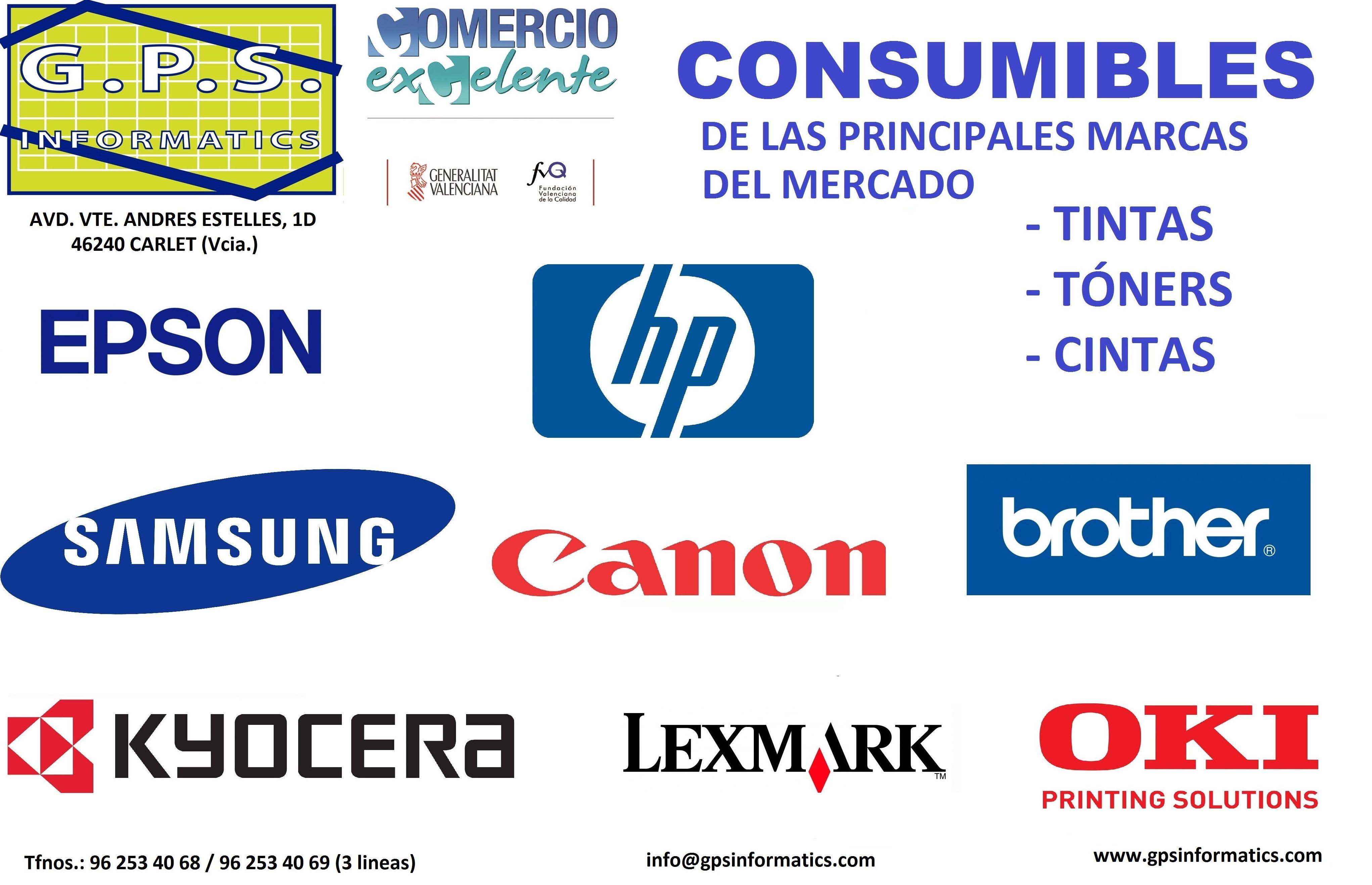 Foto 1 de Informática (hardware y software) en Carlet | G.P.S. Informàtics, S.L.