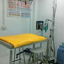Cirugías: Productos y servicios de Veterinario El Puertito