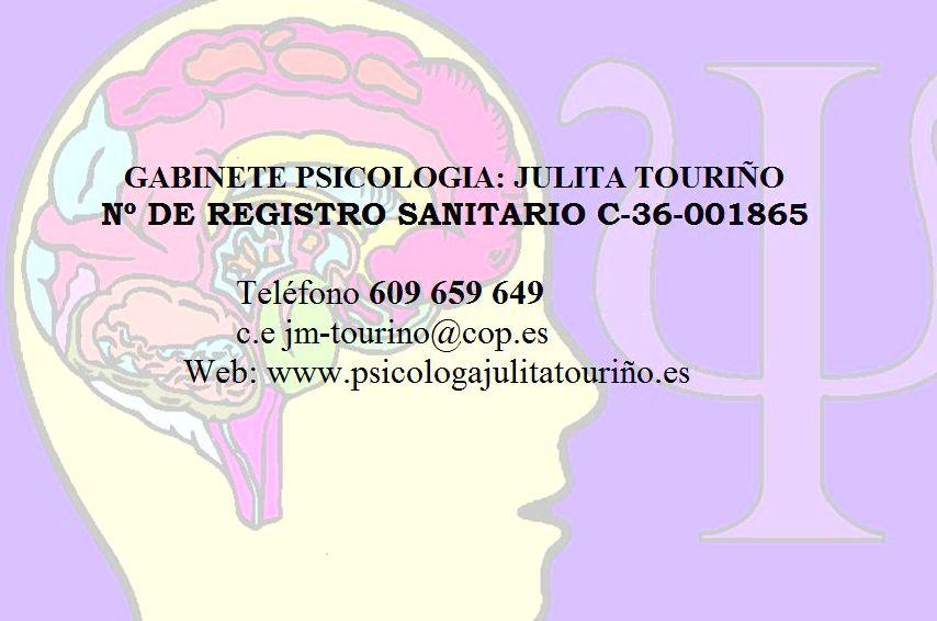 Foto 1 de Psicólogos en PONTEVEDRA | Julita María TOURIÑO ARAUJO