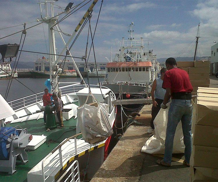 Foto 3 de Distribución y venta de pescado congelado en Vigo | Espamar